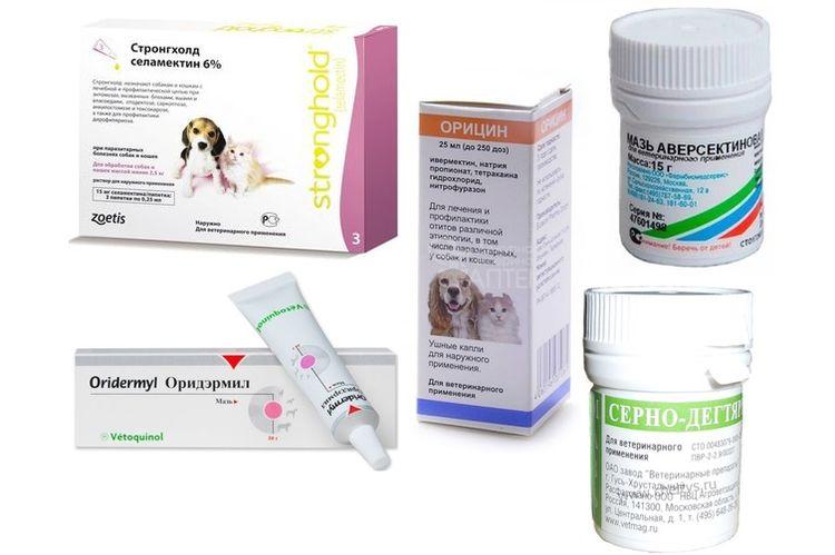 Препараты для лечения отодектоза у собак
