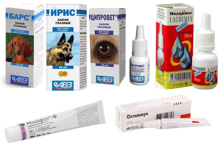 Капли для лечения повреждения роговицы у собак