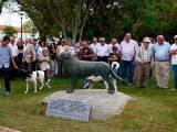 памятник собаке Рафейру ду Алентежу