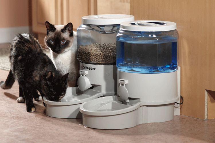 Автоматическая кормушка и поилка для кошек