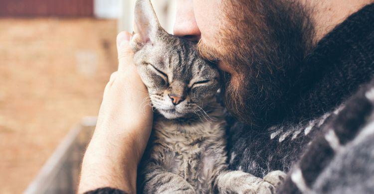Мужчина обнимает кошку