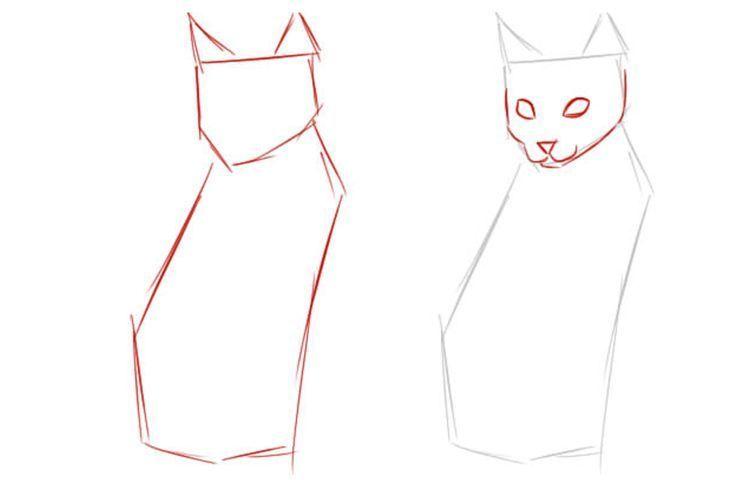 Как нарисовать сидячую кошку в полный рост