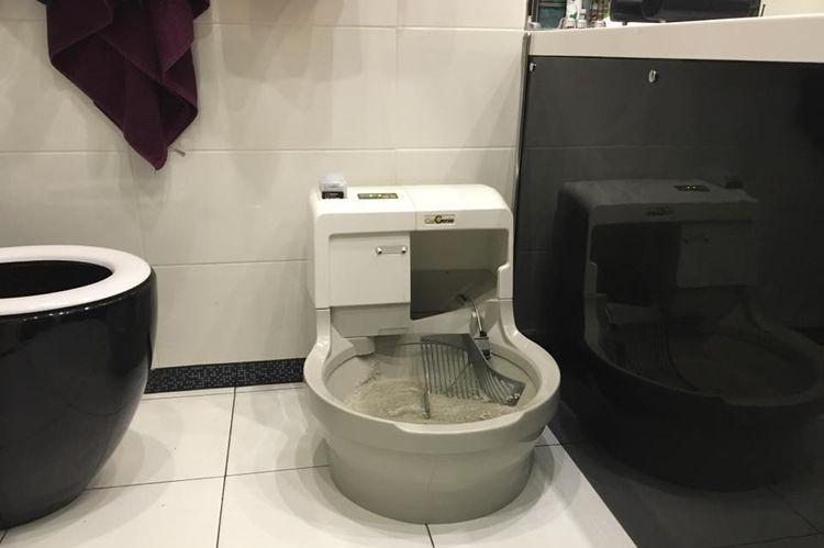 Самоочищающийся туалет для котов