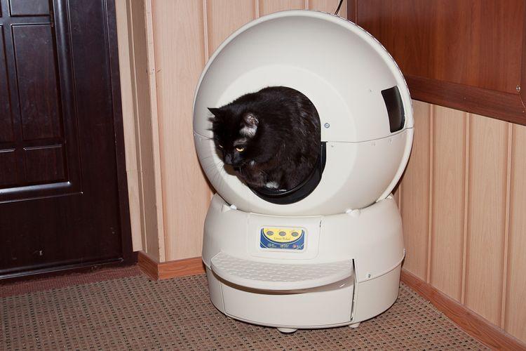 Самоочищающийся туалет для кошек
