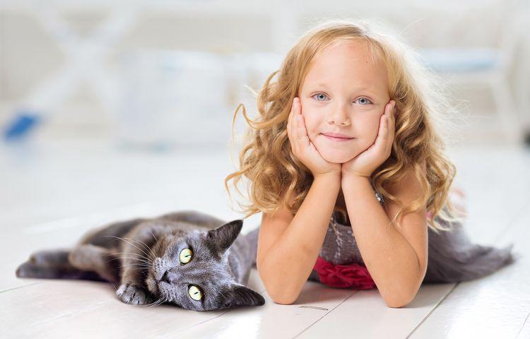 Девочка и серый котенок