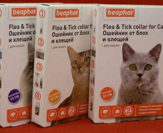 Ошейники для кошек Беафар