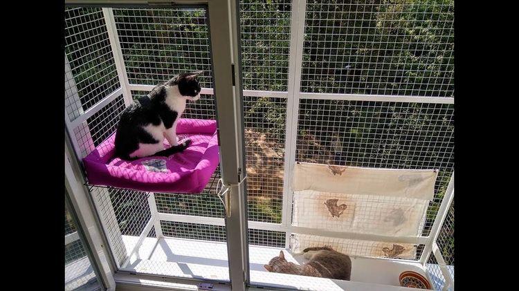 Сетка-балкон для кошек