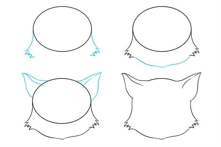 Пошаговое рисование морды кошки аниме