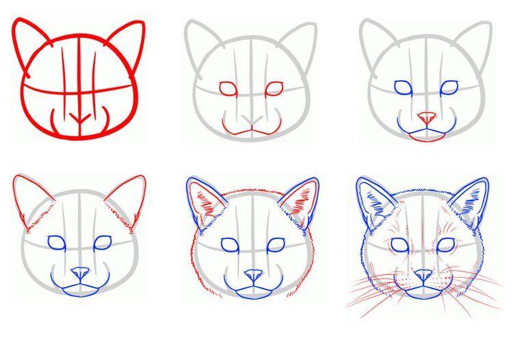 Рисунок морды кошки