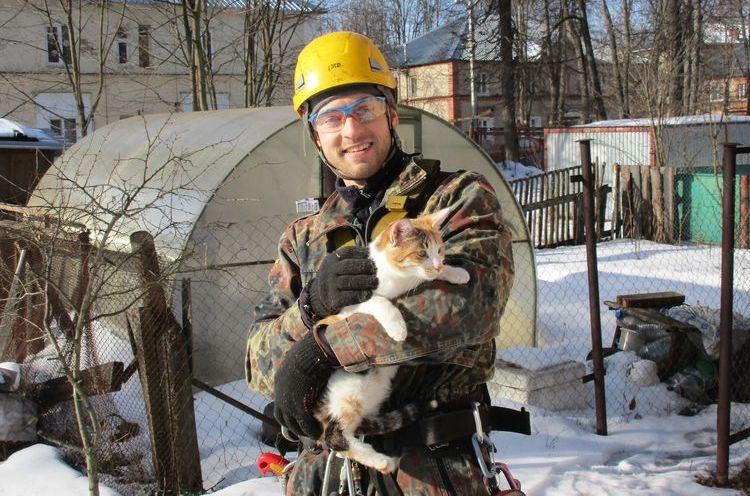 Спецслужбы сняли кота с дерева