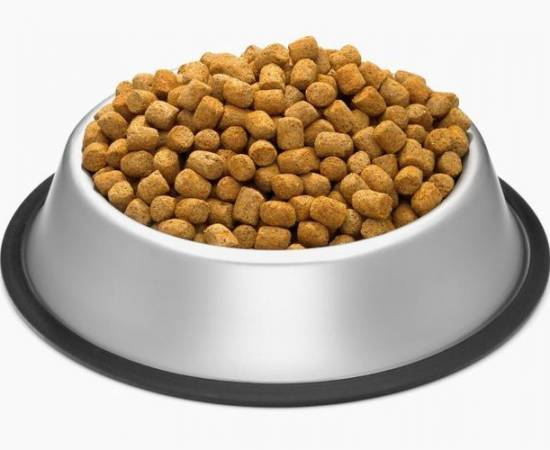 Сухой корм в миске