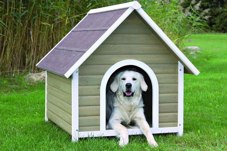 Облицовка будки для собак