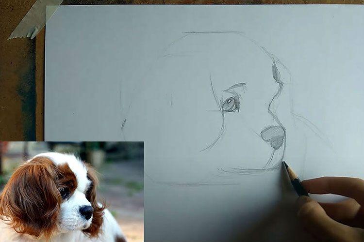 Рисованный пёс