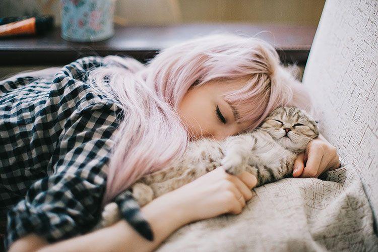 Сон с кошкой