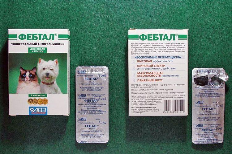 Как выглядят таблетки Фебтал