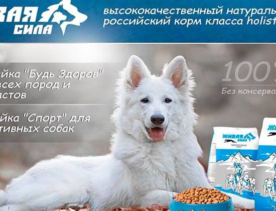 "Корм для собак ""Живая сила"""