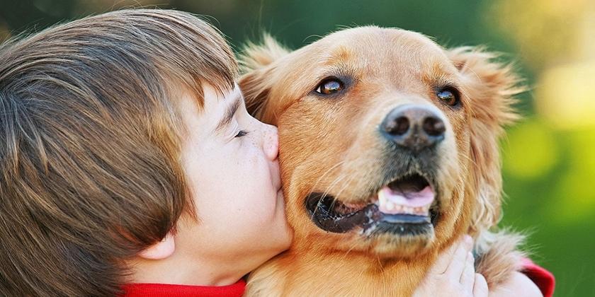 Какую собаку завести для ребёнка