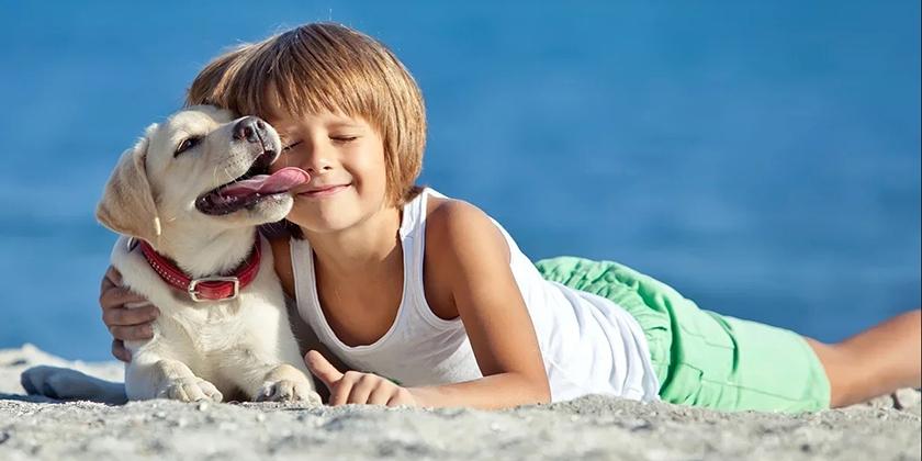Мальчик со щенком лабрадора