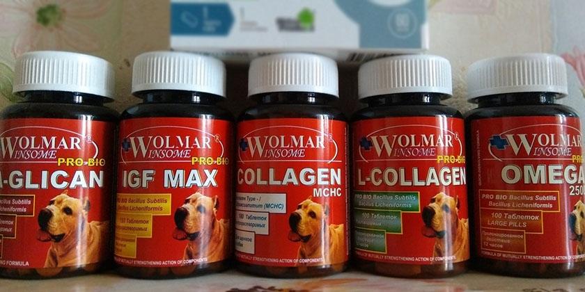 Витамины для собак Волмар