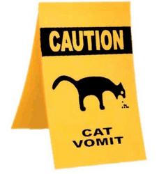 Тошнота и рвота у кота или кошки.