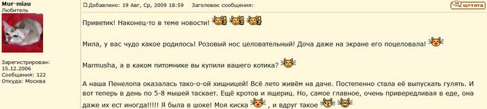 отзыв о бурмилле кошке