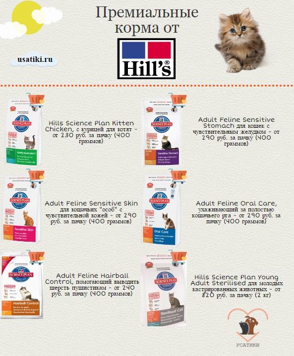 Лучшие корма хиллс для кошек