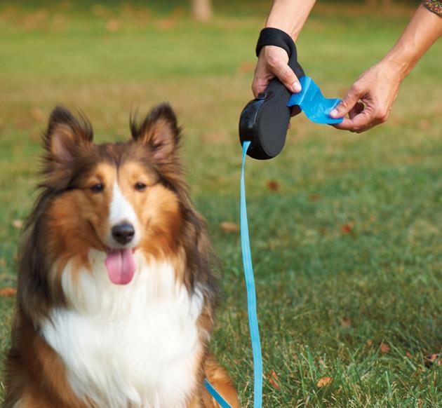 Рулетка поводок для собаки