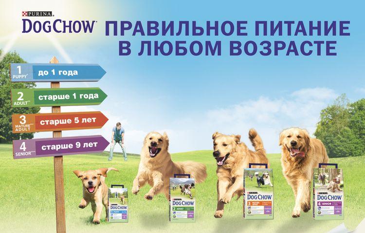 Ассортимент Dog Chow