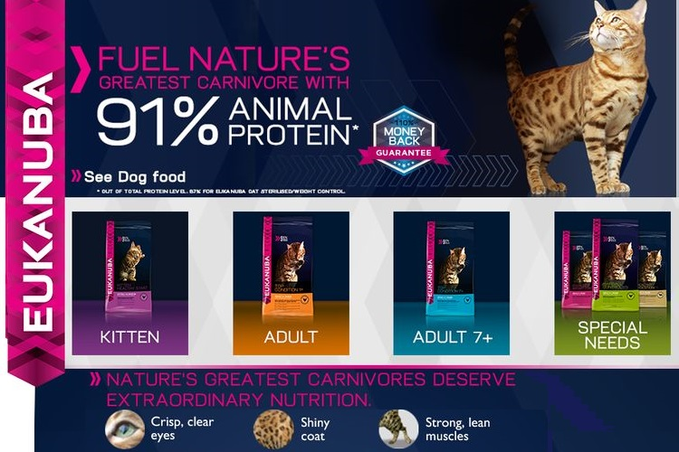 Ассортимент корма Эукануба для кошек