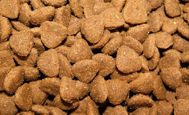 Сухой корм для собак Gemon