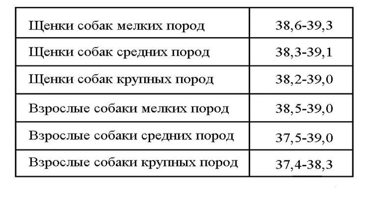 Нормы температуры