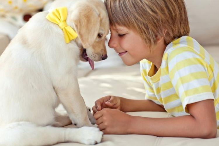 Ребенок и щенок с бантиком