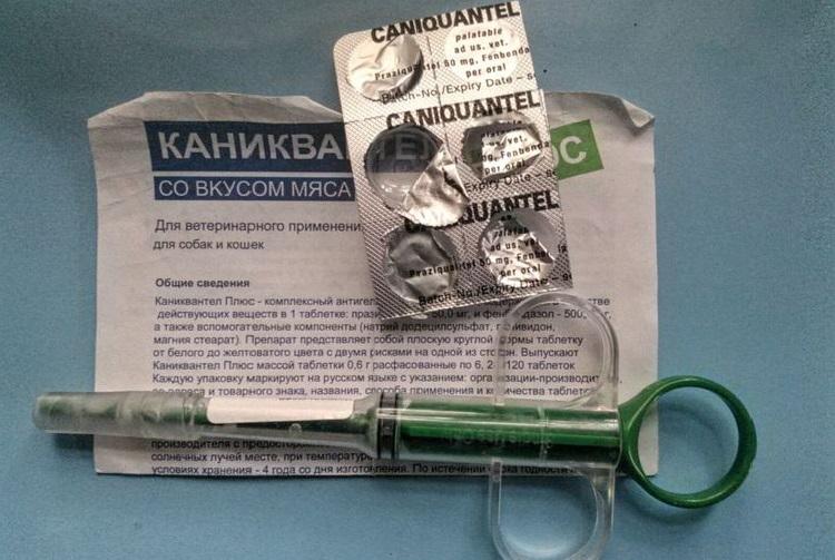 Таблетки Каниквантел и шприц