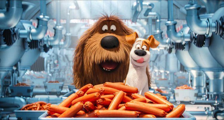 Две собаки смотрят на сосиски