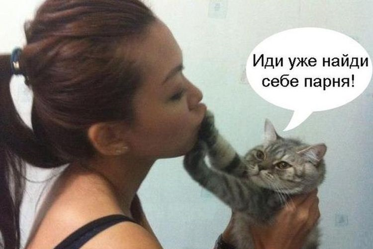 Кот толкает хозяйку лапой