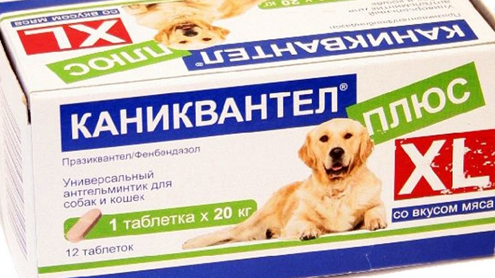 каниквантел плюс для собак