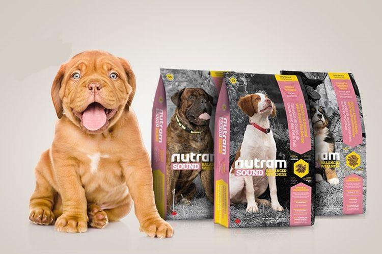 Корм для собак Нутрам