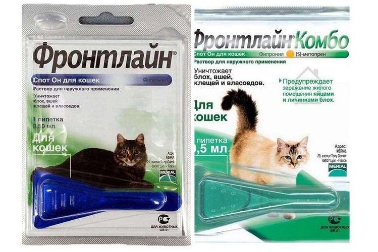 Капли от блох Фронтлайн для котов