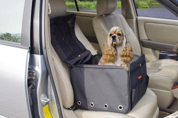 Автомобильная сумка для собак