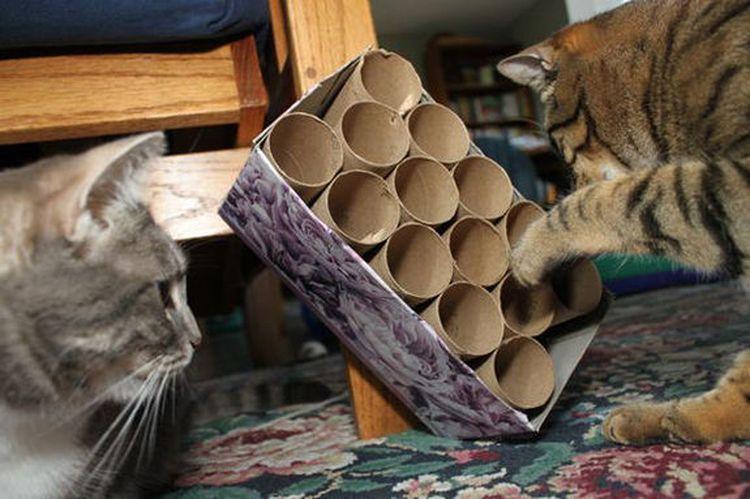 Игрушка для кота из рулонов туалетной бумаги