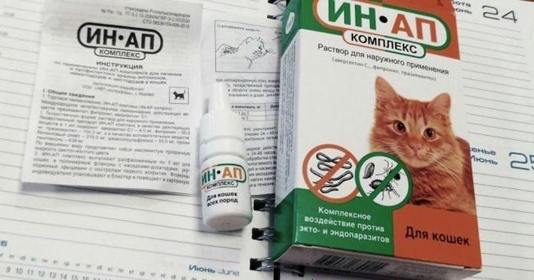 ИН-АП комплекс для кошек