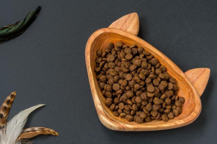 Кошачий корм в миске