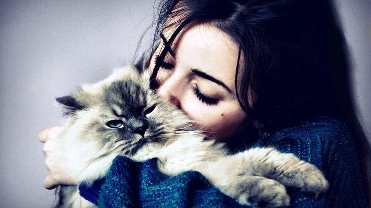 Девушка целует пушистую кошку