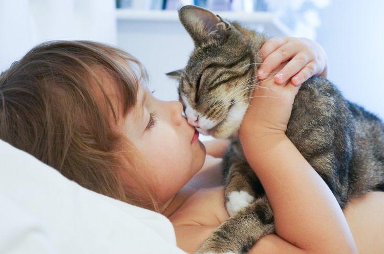 Ребенок целует котенка