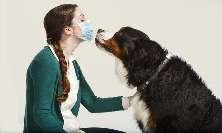 Девушка в маске и собака