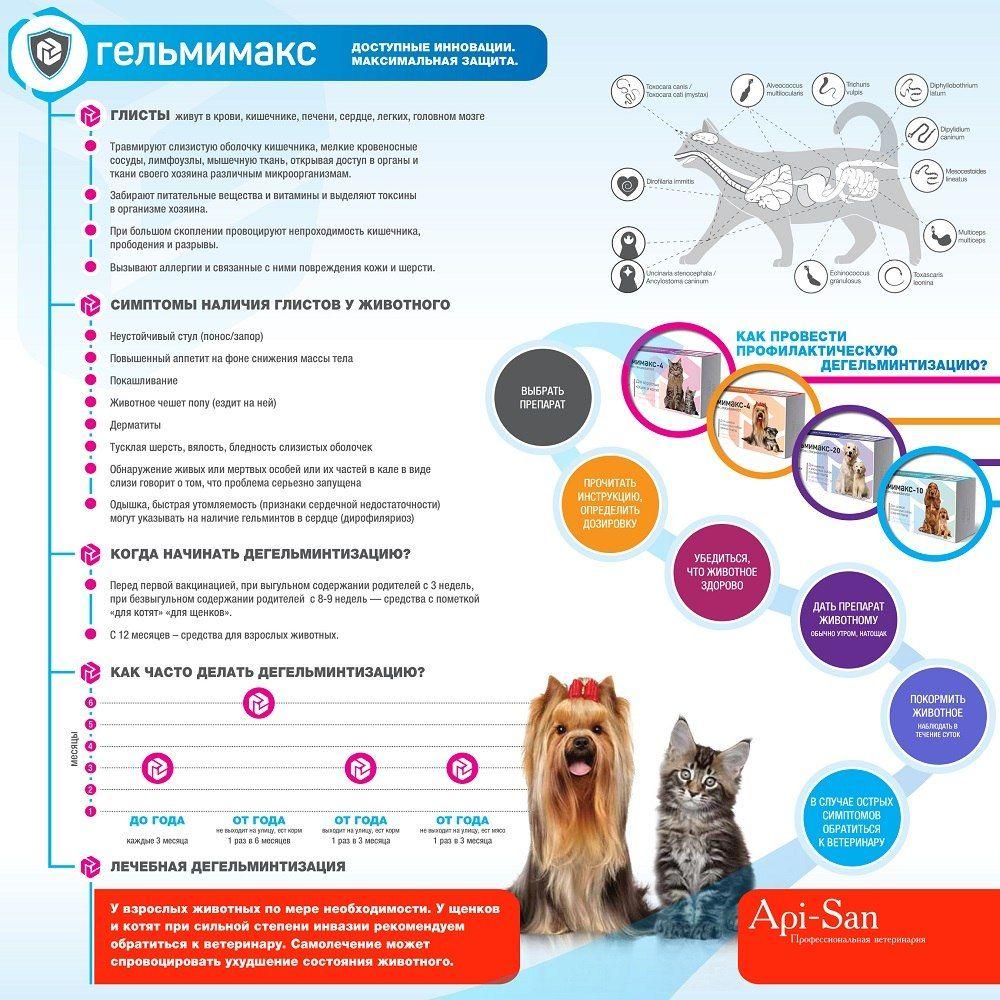 Инструкция по профилактике паразитов