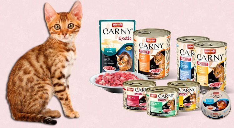 Корм Анимонда (Animonda) для кошек