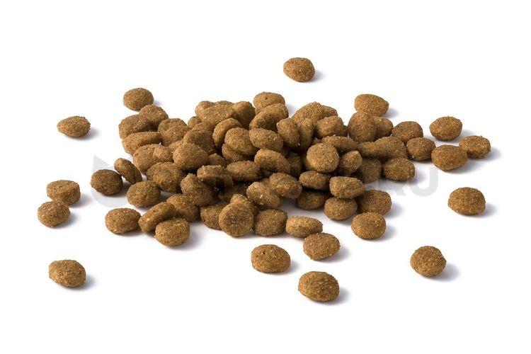 Сухой корм для кошек с МКБ