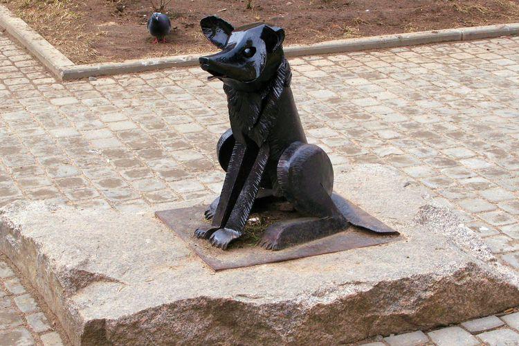 Памятник «Бродячей собаке Гаврюше» (г. Санкт-Петербург)