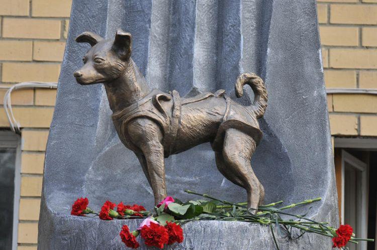Памятник Лайке (г. Москва)